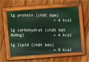 1g protein cung cấp bao nhiêu calo