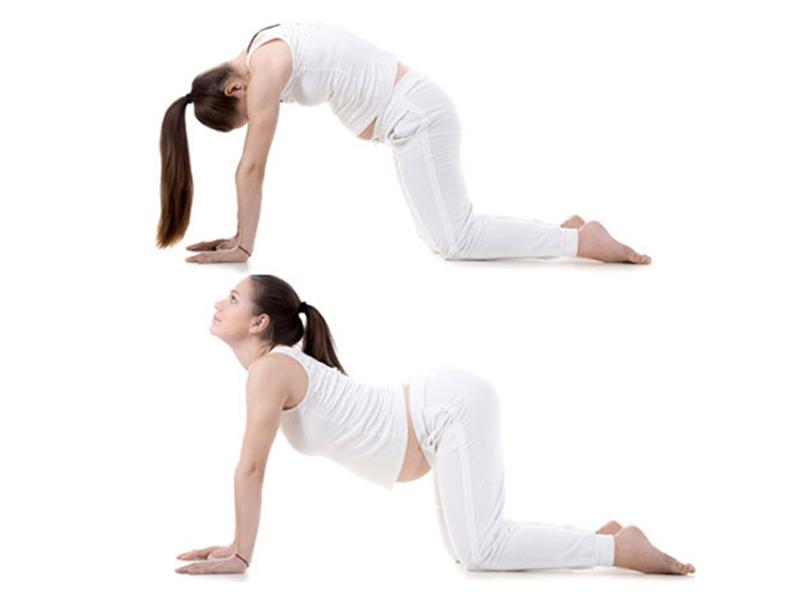 Bài tập yoga cho người cao tuổi-2