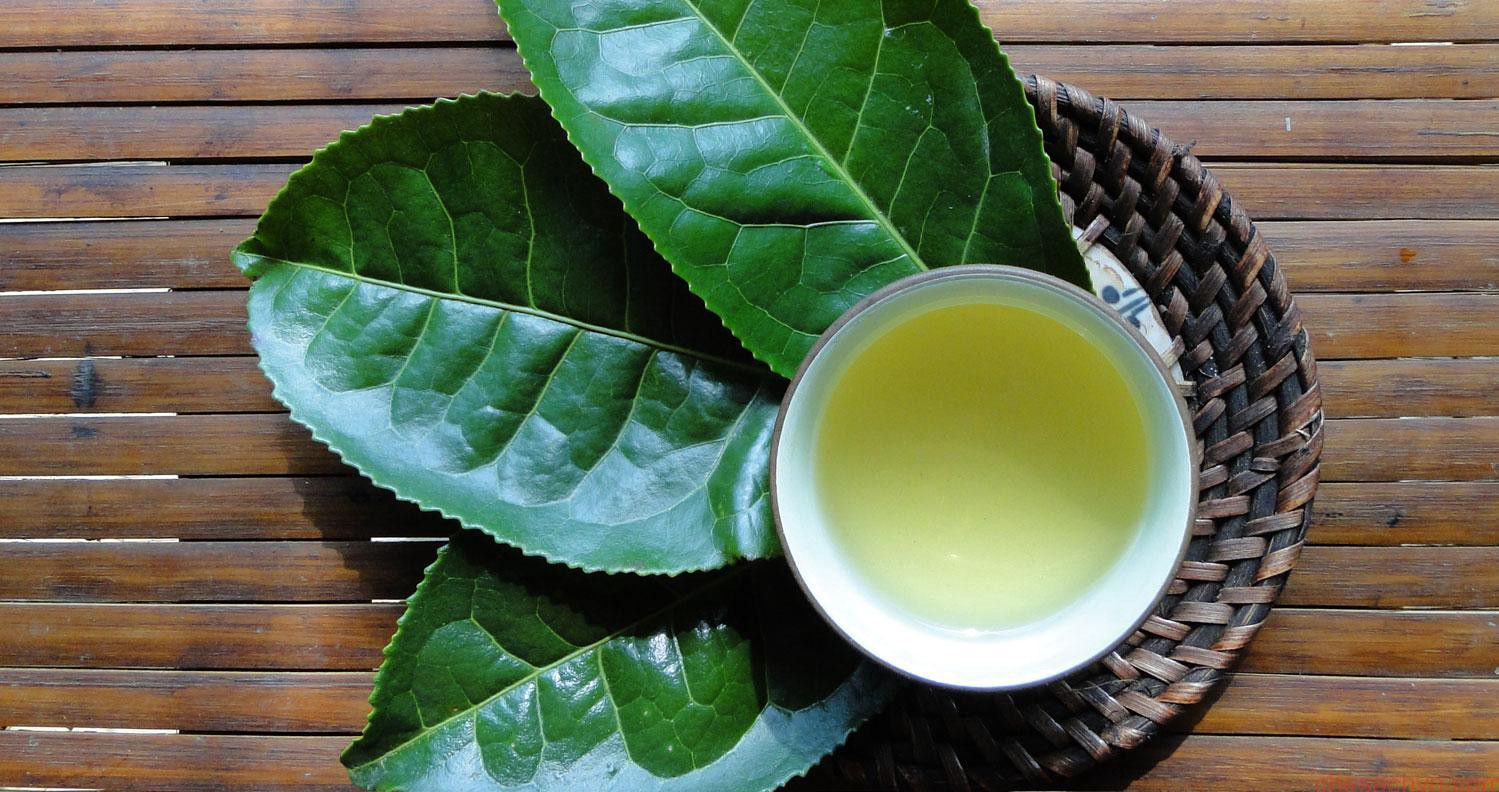 Tác dụng của trà xanh tươi-2