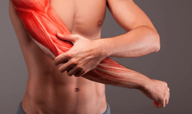 tập gym bị đau cơ có nên tập tiếp-1